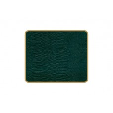 Texture Coasters Green Lizard