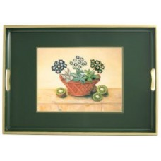 Traditional Tray Auriculas